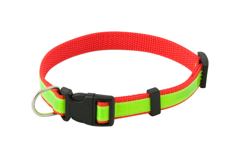 Muttley visibility dog's collar