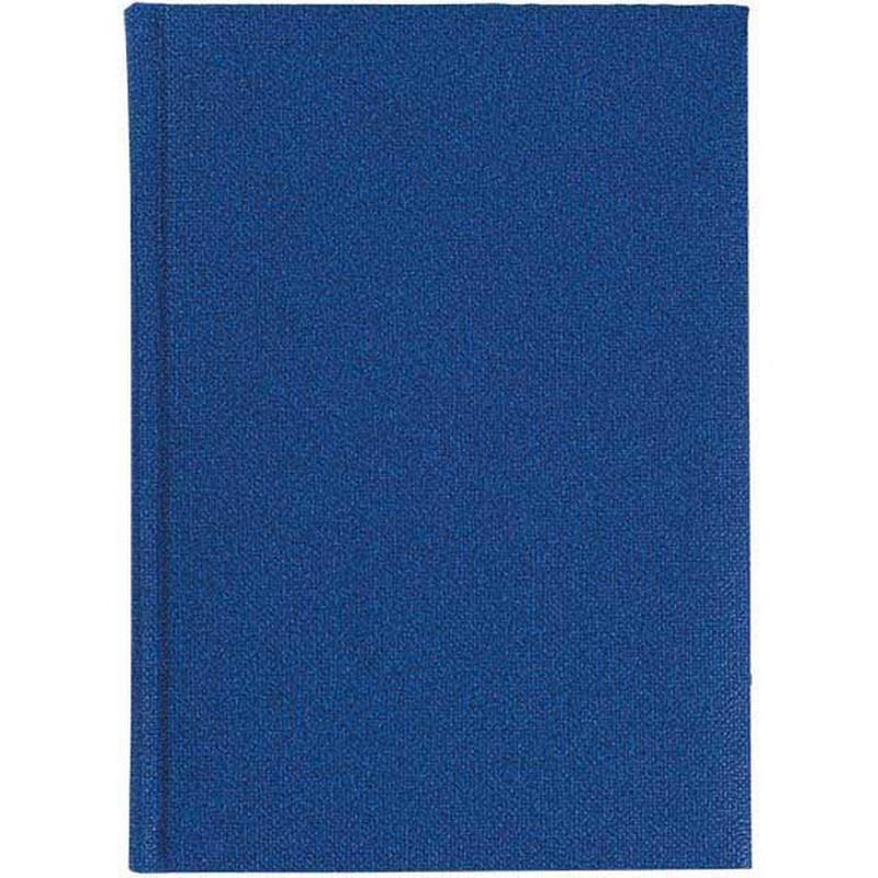 Agenda 449 DELHI, nedatata 17X24 - albastra