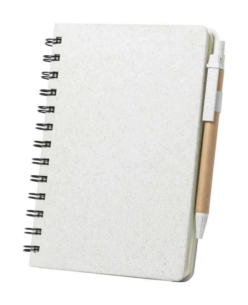 Glicun notebook