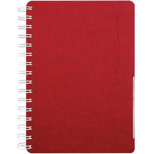 Agenda InSpire, medium, nedatata, cod 107