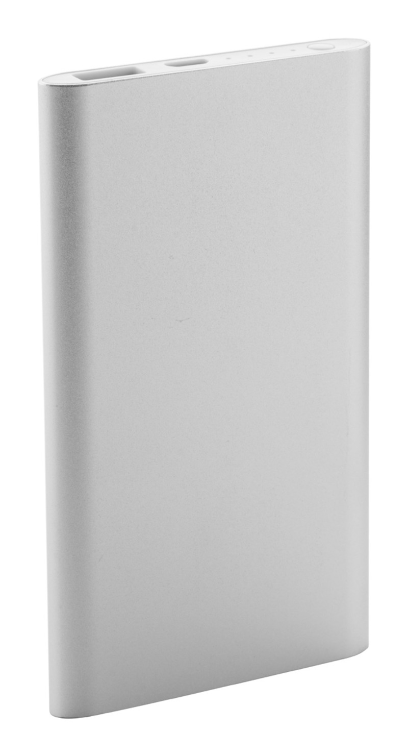 Wilkes USB power bank