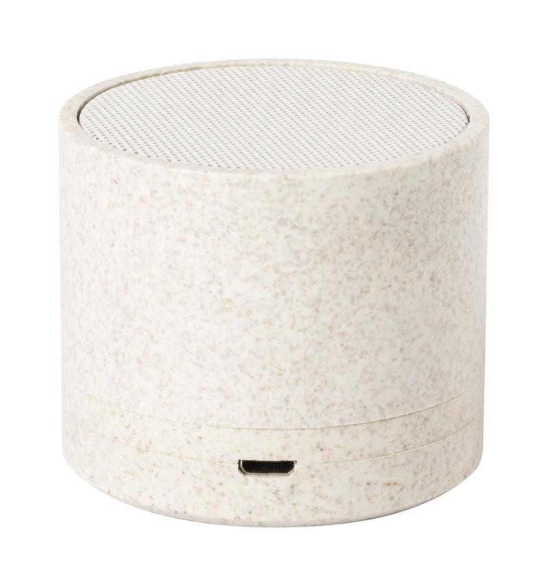 Cayren bluetooth speaker