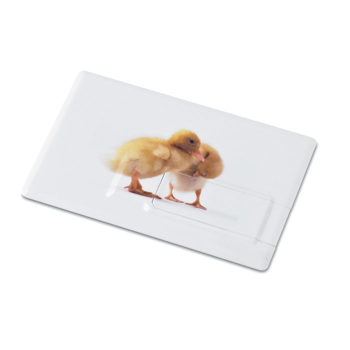 Creditcard. USB flash 4GB      MO1059-06