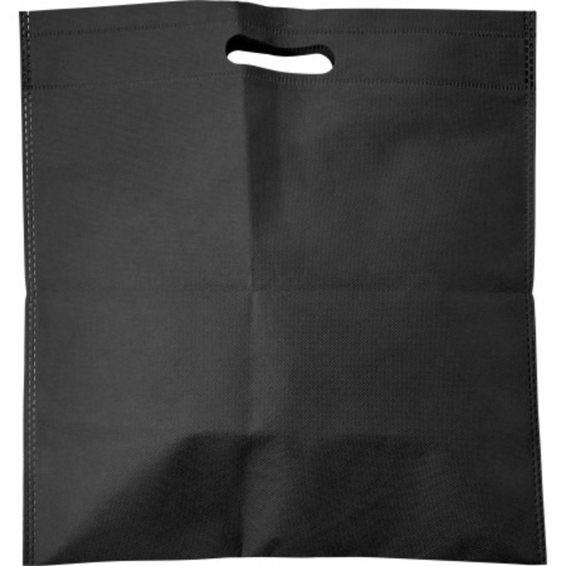 Nonwoven carry/document bag