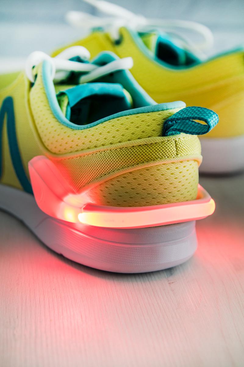 Terrier shoe light